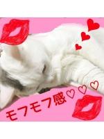 大江戸 歌舞伎町 朝 - あんなの女の子ブログ画像